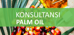 2. Palm Oil