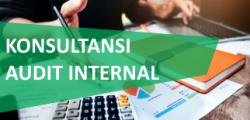4. Audit Internal
